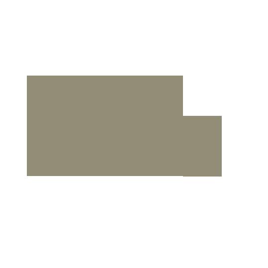 ALASIA_MEDICEA